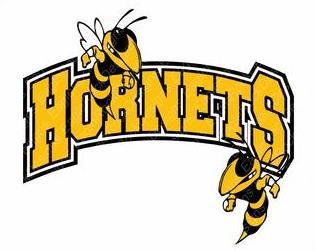 Hornets!